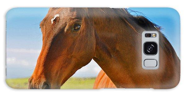 Horse Galaxy Case by Sabine Edrissi