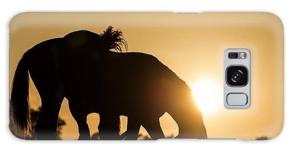 Horse Sunset Galaxy Case by Michael Mogensen