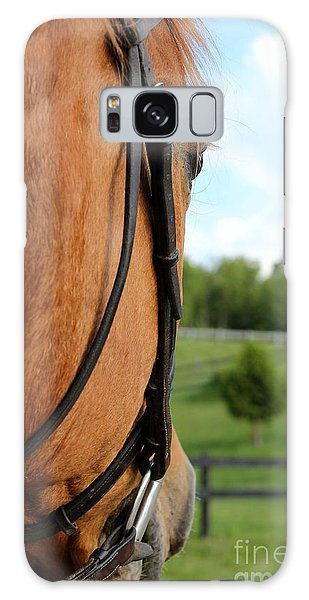 Horse View Galaxy Case