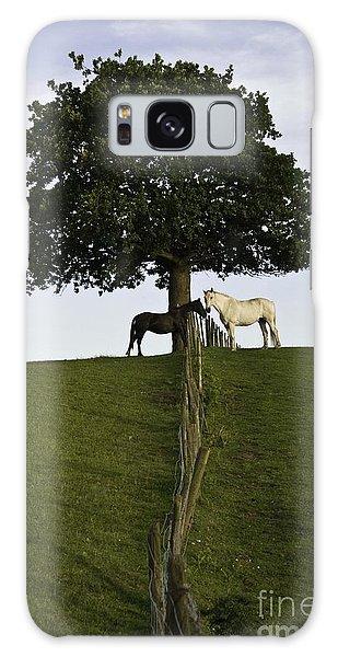 Horse Whisperers   Galaxy Case