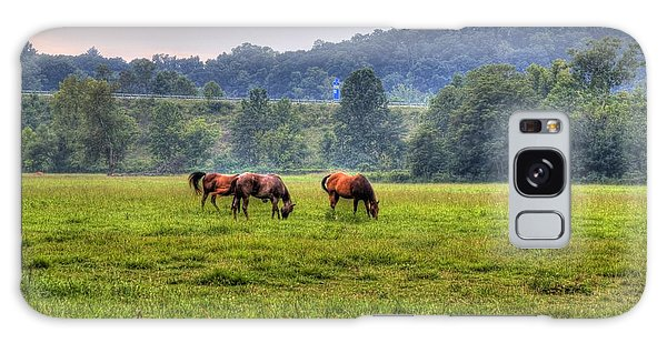 Horses In A Field 2 Galaxy Case