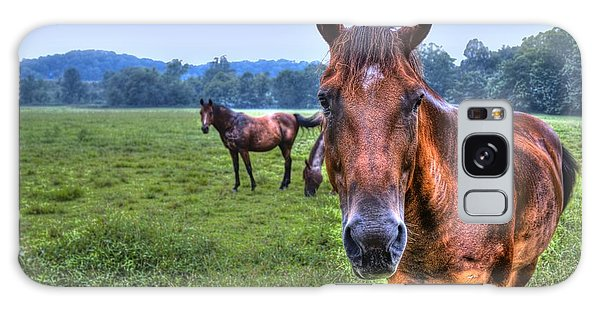 Horses In A Field Galaxy Case
