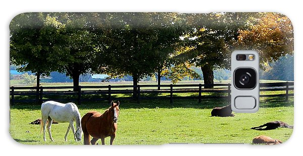 Horses In Fall Galaxy Case