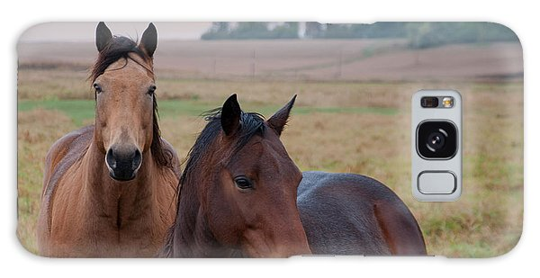 Horses In Rural Northwest Iowa  Galaxy Case