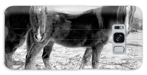 Horses In Winter Coats Galaxy Case
