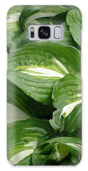 Hosta Leaves After The Rain Galaxy Case by Christina Verdgeline