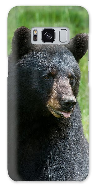 Hot Day In Bear Country Galaxy Case