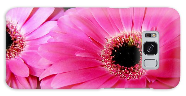 Hot Pink Gerber Daisies Macro Galaxy Case