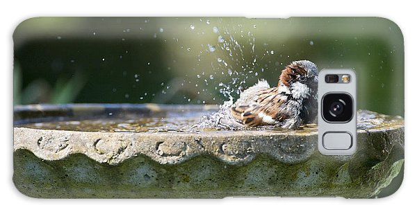 House Sparrow Washing Galaxy Case