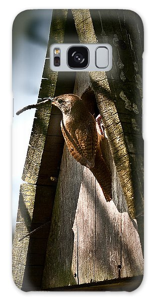 House Wren At Nest Box Galaxy Case