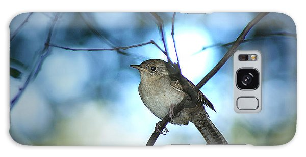 House Wren On Blue Galaxy Case