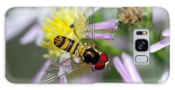 Hoverfly Galaxy Case