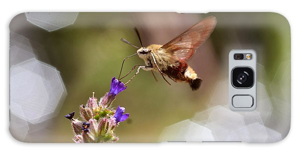 Hovering Pollination Galaxy Case