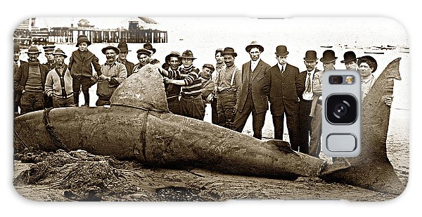 Huge Basking Shark Near Fishermans Wharf Monterey California Circa 1912 Galaxy Case