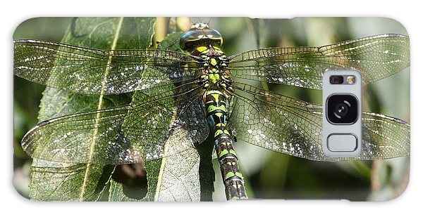 Huge Dragon-fly In Detail. Galaxy Case
