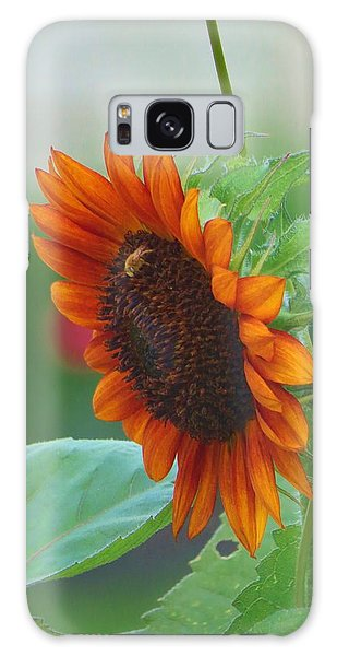 Humility Of A Sunflower Galaxy Case by Jeanette Oberholtzer