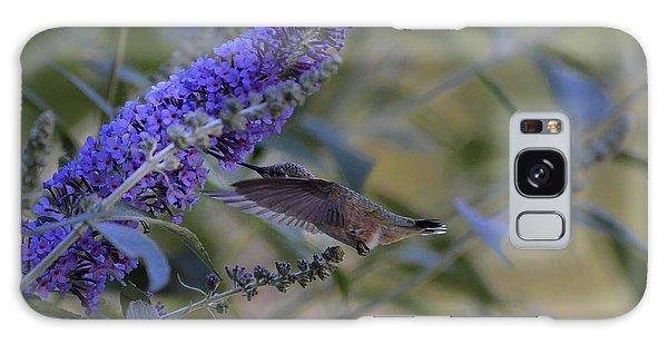 Humming Bird Green- Butterfly Bush Galaxy Case