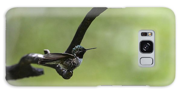 Hummingbird -wings- Galaxy Case