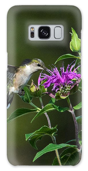 Hummer On Bee Balm Galaxy Case