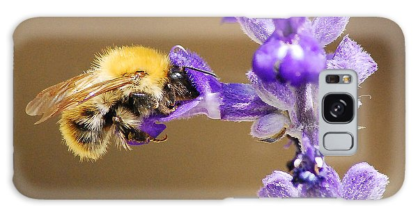 Galaxy Case featuring the photograph Humming Bee  by Stwayne Keubrick