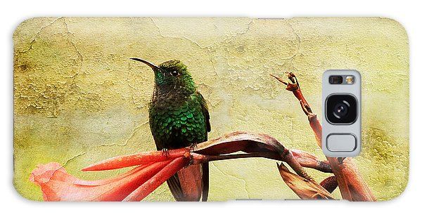 Hummingbird 1 Galaxy Case