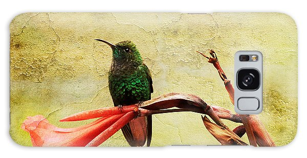 Hummingbird 1 Galaxy Case by Teresa Zieba