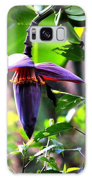 Hummingbird And Banana Tree Galaxy Case