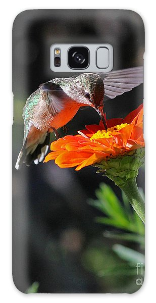 Hummingbird And Zinnia Galaxy Case