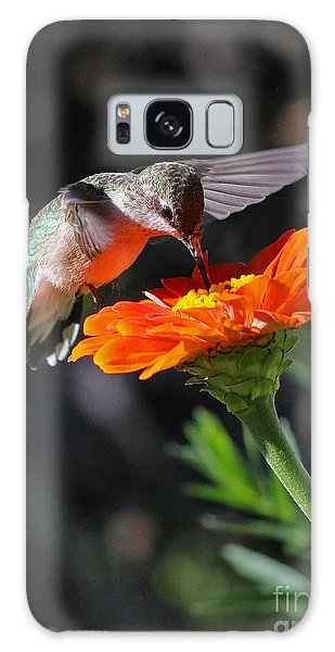 Hummingbird And Zinnia Galaxy Case by Steve Augustin