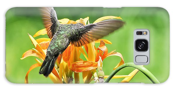 Hummingbird At Lunchtime Galaxy Case by David Perry Lawrence