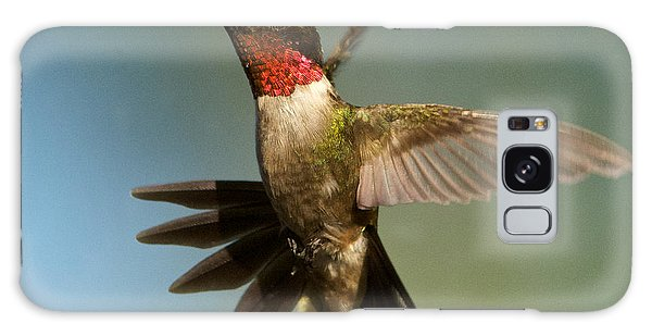Hummingbird Beauty Galaxy Case