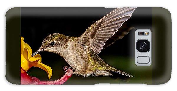 Ruby Throated Hummingbird Galaxy Case by Brian Caldwell