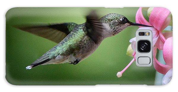 Hummingbird Carbs Galaxy Case