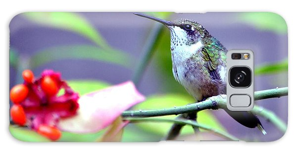 Hummingbird Galaxy Case by Deena Stoddard