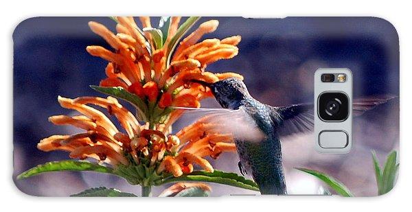 Hummingbird Delight Galaxy Case by AJ  Schibig