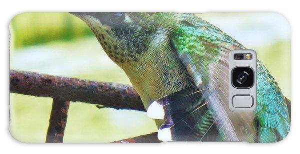 Hummingbird Details 6 Galaxy Case