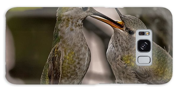 Hummingbird Feeding Baby Galaxy Case
