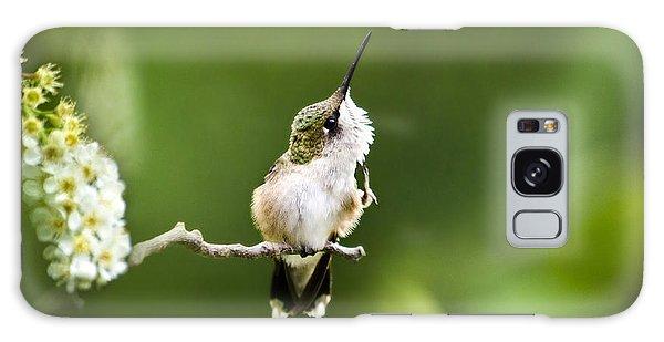 Galaxy Case featuring the photograph Hummingbird Flexibility by Christina Rollo