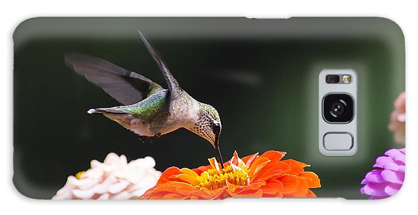 Hummingbird In Flight With Orange Zinnia Flower Galaxy Case