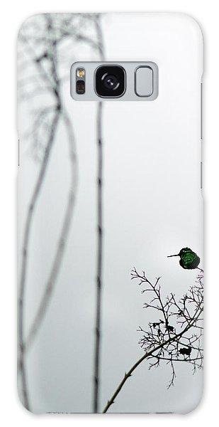 Hummingbird In Fog 2 Galaxy Case