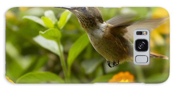 Galaxy Case featuring the photograph Hummingbird Looking For Food by Heiko Koehrer-Wagner