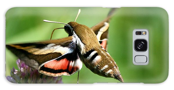 Hummingbird Moth From Behind Galaxy Case by Neal Eslinger
