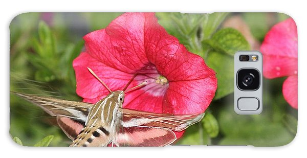 Hummingbird Moth Galaxy Case by Tiffany Erdman