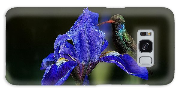 Hummingbird On A Mexican Blue Exotic Flower Galaxy Case by John  Kolenberg