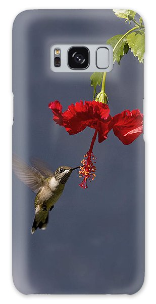 Hummingbird On Hibiscus Galaxy Case