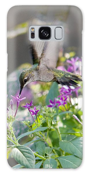 Hummingbird On Penta Galaxy Case