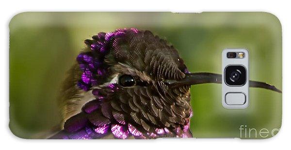 Haybale Galaxy Case - Hummingbird Portrait by Robert Bales