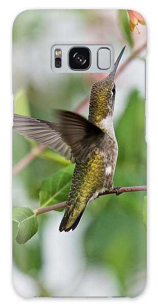 Hummingbird Reaching For The Blossoms Galaxy Case