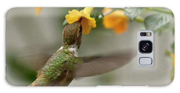 Galaxy Case featuring the photograph Hummingbird Sips Nectar by Heiko Koehrer-Wagner