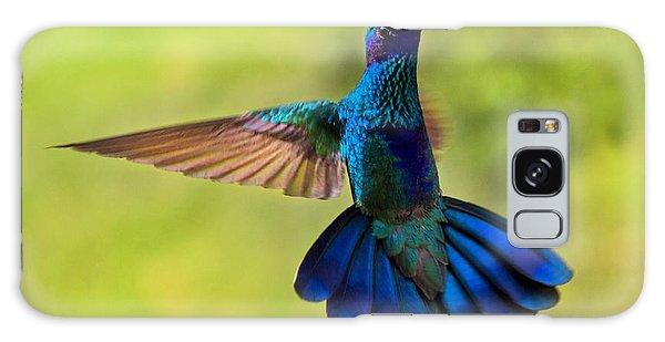 Hummingbird Splendour Galaxy Case